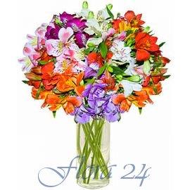 Доставка цветов каменец-подольський где купить свежие цветы акации